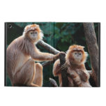 Langur Monkey Wildlife Animal Photo Cover For iPad Air