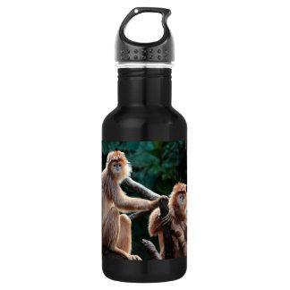 Langur Monkey Wildlife Animal Photo Water Bottle