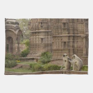Langurs de Hanuman o Negro-hecho frente, campo com Toallas De Mano