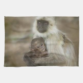 Langurs de la Negro-cara, madre con el bebé, adent Toalla