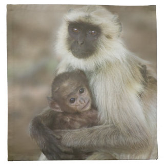 Langurs de la Negro-cara, madre con el bebé, adent Servilleta