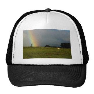 Lani Aina Hat