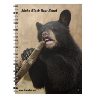 Lanikai Notebook