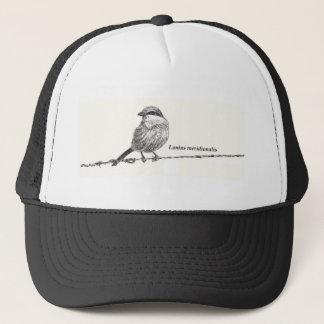 Lanius meridionalis trucker hat