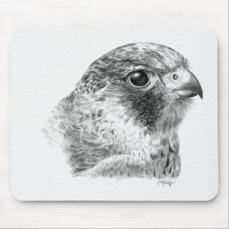 Lanner Falcon Drawing Mouse Pad