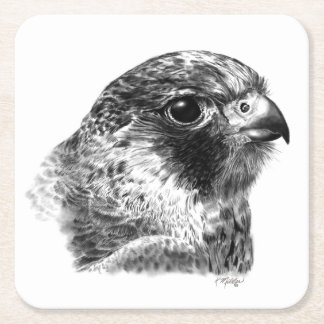 Lanner Falcon Drawing Square Paper Coaster