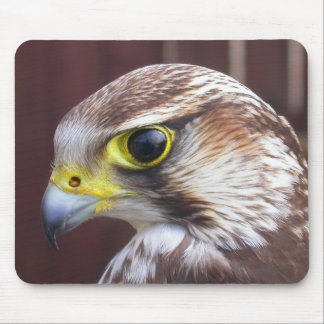 Lanner Falcon Mouse Pad