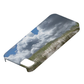 Lanscape iPhone 5 Covers