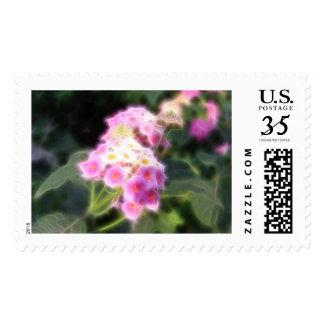 Lantana 1 Angelic Postcard Postage Stamp