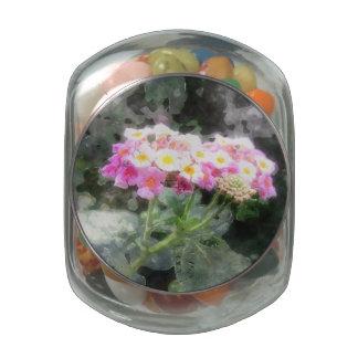Lantana 2 Watercolor Glass Candy Jars