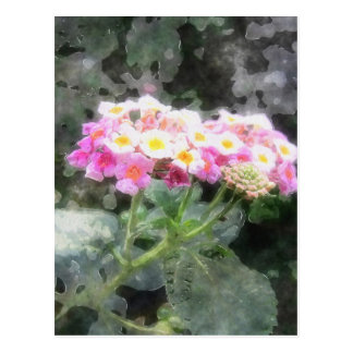 Lantana 2 Watercolor Postcard