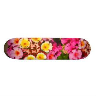 Lantana Camara Skate Boards