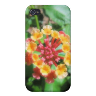 Lantana Cases For iPhone 4