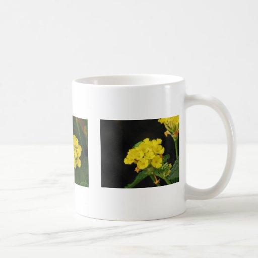 Lantana Classic White Coffee Mug