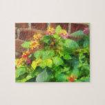 Lantana contra la pared de ladrillo puzzles con fotos