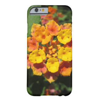 Lantana Desert Flower Barely There iPhone 6 Case