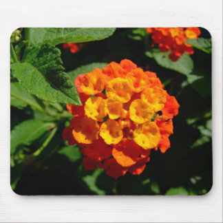 Lantana flower mouse pad