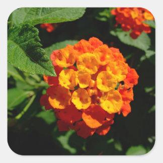 Lantana flower square sticker
