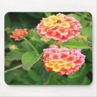 Lantana Flowers Mousepad