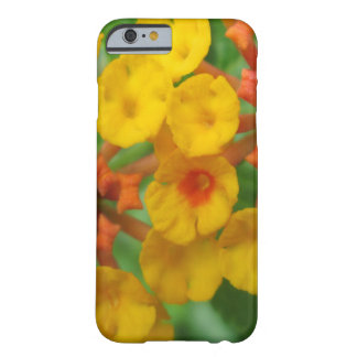 Lantana Garden Flower Yellow Barely There iPhone 6 Case