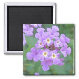 Lantana Plant Purple Floral Magnets