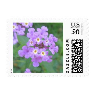 Lantana Plant Purple Floral Postage