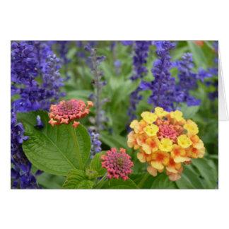 Lantana & Salvia Flowers Note Card