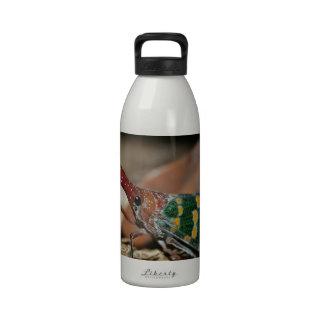Lantern cicada reusable water bottle