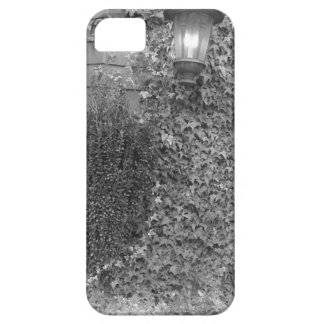 lantern iPhone SE/5/5s case