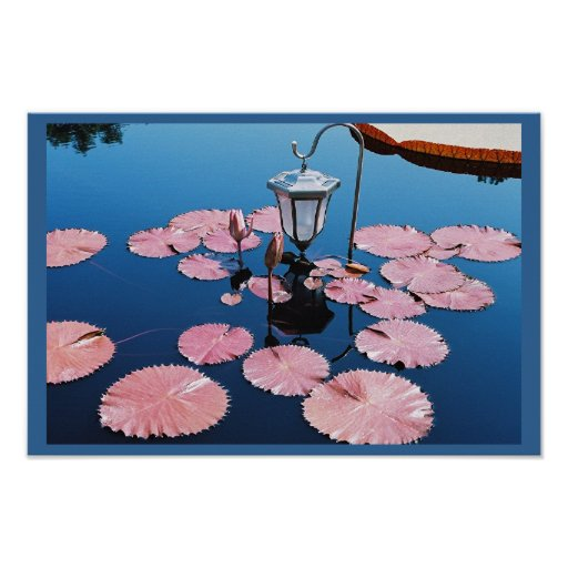 Lantern Over Lilies Poster