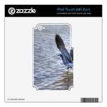 Lanzamiento de la gaviota iPod touch 4G skin