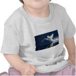 Lanzamiento del cisne camisetas