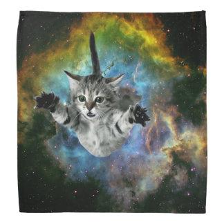 Lanzamiento del gatito del universo del gato de la bandana