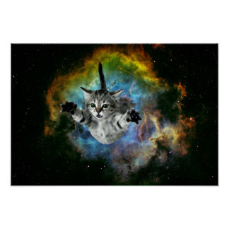 Lanzamiento del gatito del universo del gato de la póster