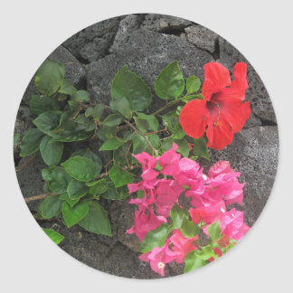 Lanzarote Lava Rock with Flowers Classic Round Sticker