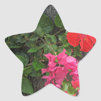 Lanzarote Lava Rock with Flowers Star Sticker