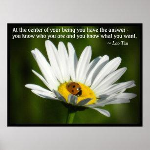 Lao Tzu Quote Ladybug Daisy Inspiration Motivation Poster