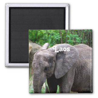 Laos Elephant 2 Inch Square Magnet