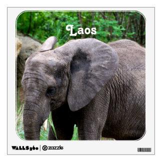 Laos Elephant Wall Skins