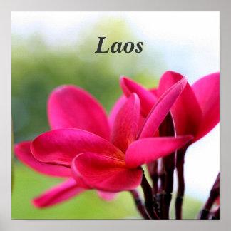 Laos Plumeria Print