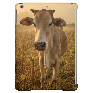 Laos, Vang Vieng. Cow at sunrise iPad Air Covers