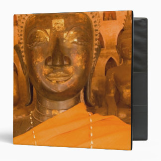 Laos, Vientiane, one of 6840 Buddha images in 2 Binder