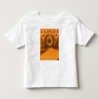 Laos, Vientiane, one of 6840 Buddha images in 2 Toddler T-shirt