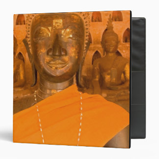 Laos, Vientiane, one of 6840 Buddha images in 3 Ring Binder