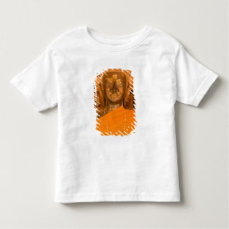 Laos, Vientiane, one of 6840 Buddha images in Toddler T-shirt