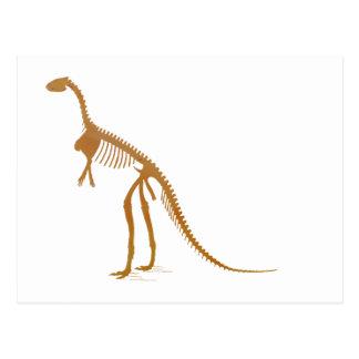 laosaurus skeleton postcard