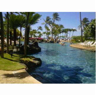 Lap of Luxury in Hawaii Statuette