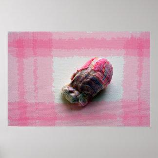 lapa en imagen de la playa de la cáscara del rosa posters