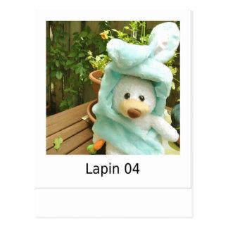 Lapin 04 postal