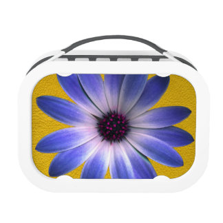 Lapis Daisy on Yellow Leather Texture Yubo Lunch Boxes